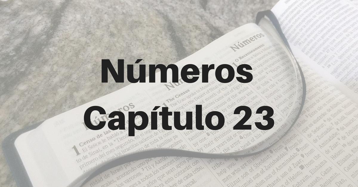 Números Capítulo 23