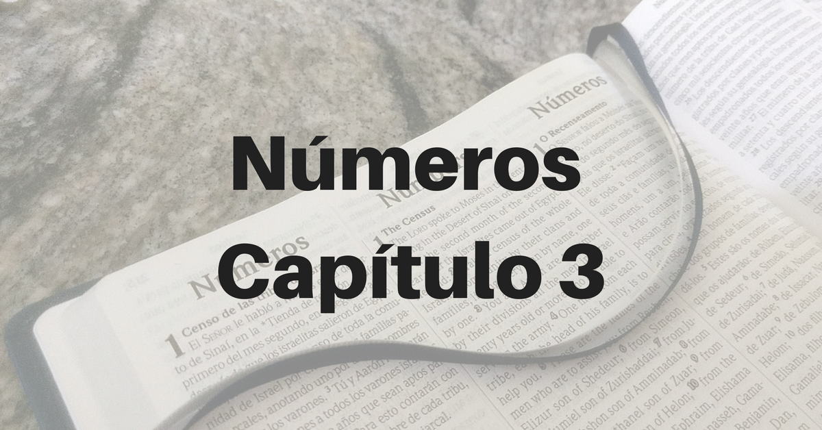 Números Capítulo 3