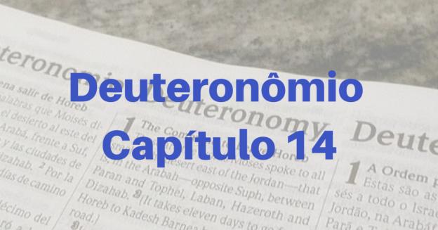 Deuteronômio Capítulo 14
