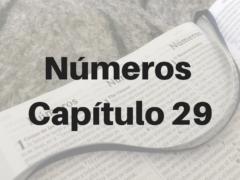 Números Capítulo 29