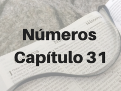 Números Capítulo 31