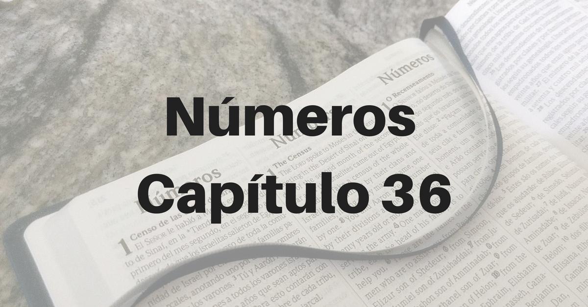 Números Capítulo 36